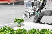 Iron Ox begins construction of robotic growing facility in Texas