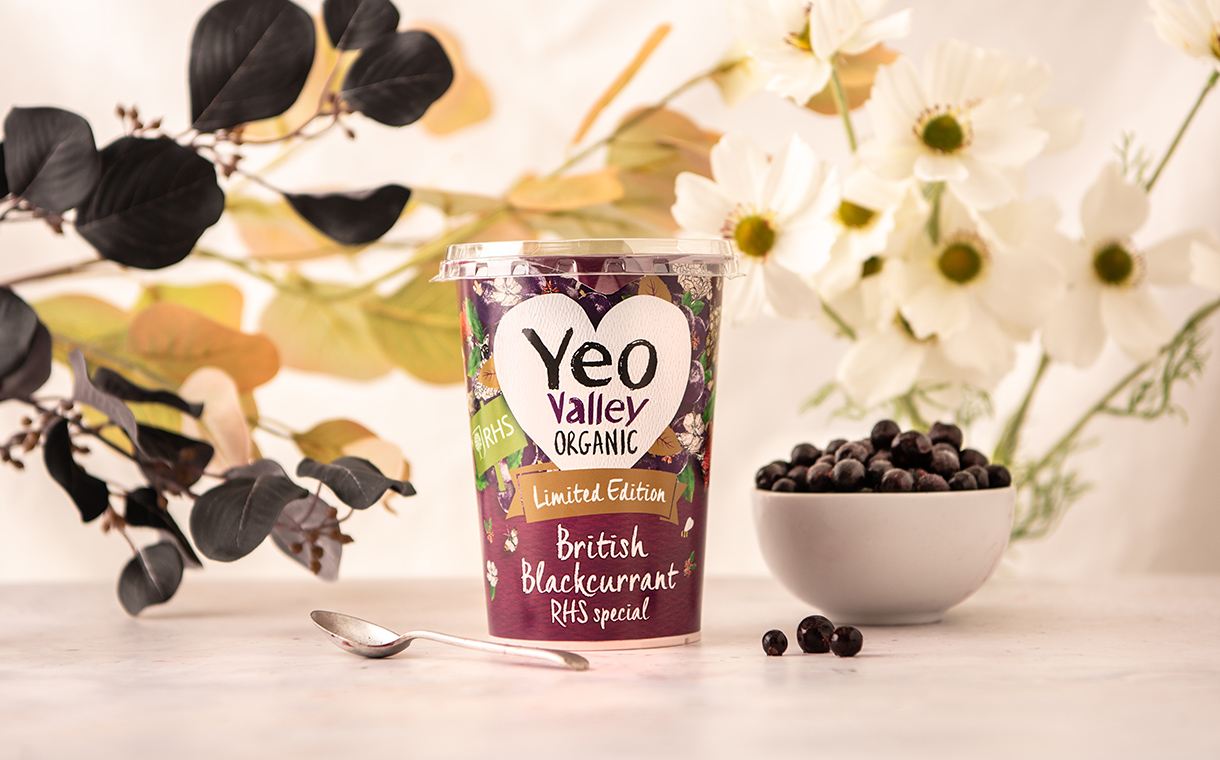Yeo Valley launches limited-edition British blackcurrant yogurt