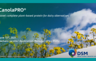 Free webinar: DSM's new plant-based protein source for dairy alternatives