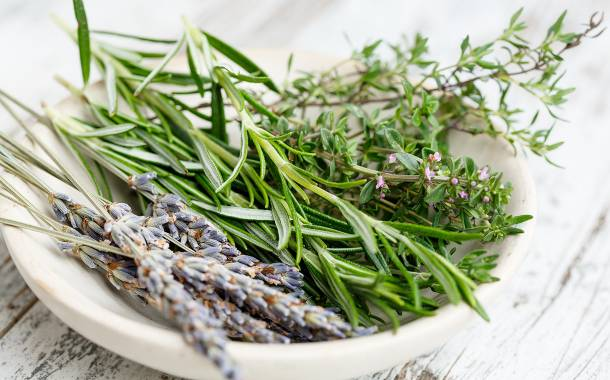Layn to invest $148m in natural sweeteners and botanical ingredients innovation