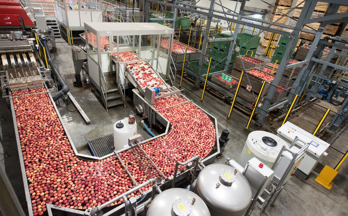 Camellia acquires majority stake in fruit supplier Bardsley England
