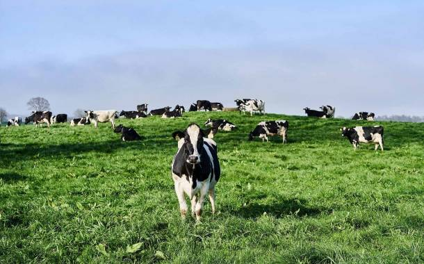 Olam Food Ingredients unveils plans to develop new dairy facility