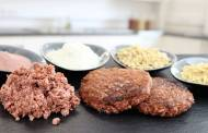 Loryma develops new plant-based meat application concept