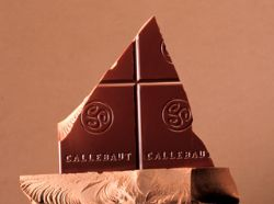 Barry Callebaut chocolate survey results